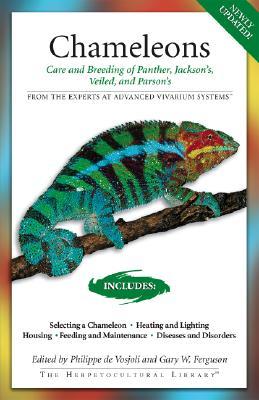 Chameleons By Ferguson, Gary/ Kalisch, Kenneth/ McKeown, Sean